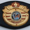 WKF MMA World title belt